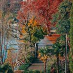 Montreux & Spa vista